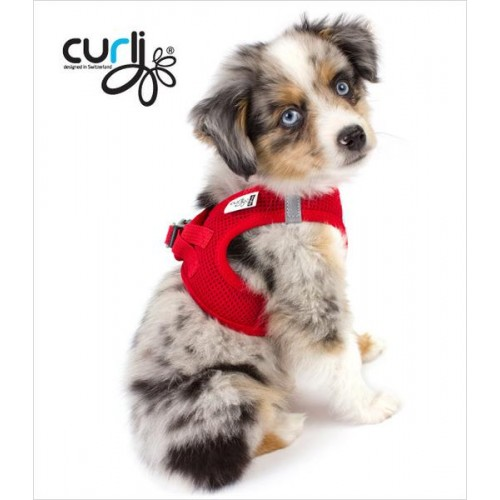 Vest harness air mesh red