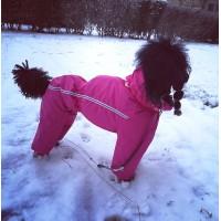 Poodle waterproof custom made jumpsuit