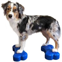 K9FITbone -mini set of 2